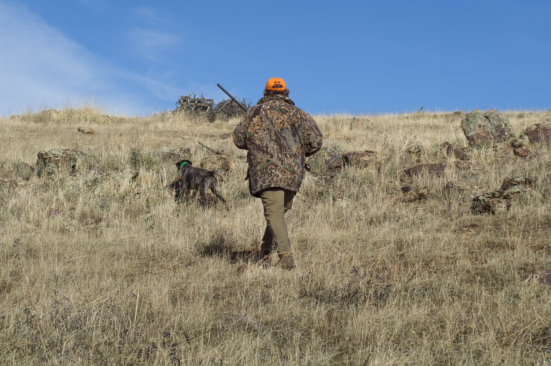 ¿Cuántos cotos de caza hay en España?
